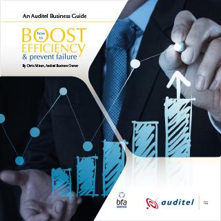 An-Auditel-Business-Guide-1